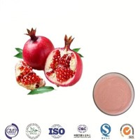 Punica Granatum Extract Powder