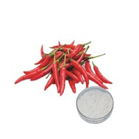 Hot Selling Natural Chili Pepper Extract, Pure Capsaicin 95% - 98%