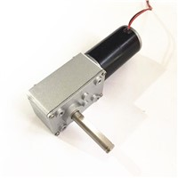 DC Worm Gear Motor with Automatic Door-Lock 24V 30RPM
