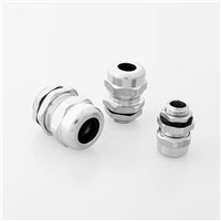 304 Stainless Steel Cable Gland / 316 SS Cable Gland/ Super Quality/ Good Service