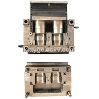 1.2316 PVC Cleanout Injection Mould for Body