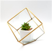 Indoor Decorative Tabletop Geometric Terrarium
