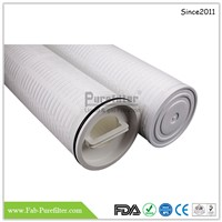 High Flow Pleated Filter Cartridge Use for Food & Beverage Industry & so on