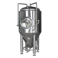 500l Conical Fermenting Equipment