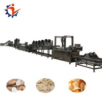Automatic Fresh Potato Chips Production Line
