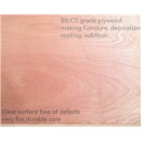 BB/CC Grade Hardwood Plywood - from China Emburg Plywood