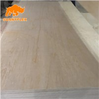 4*8 Pine Face Poplar Core Plywood for Furniture