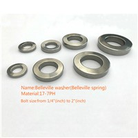 Customized Stainless Steel Washer Spring