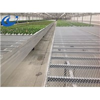 Greenhouse Expanded Metal Mesh Rolling Seedbed/Bench