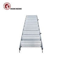 Standard Ringlock Steel Stairs Ladder Scaffolding Accessories
