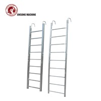 Q235 Galvanized Ladder Scaffolding Parts 3m Monkey Ladder for Frame