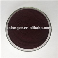 High Quality Bilberry Extract Anothcyanin 25% Herbal Extract