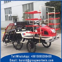 Rice Planting Machine for Sale