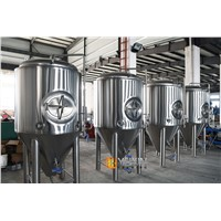 3000l 5000l Commercial Conical Stainless Steel Fermentation Tank