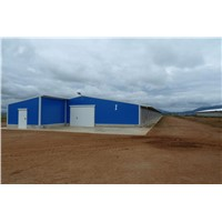 Agriculture Steel Structure Dairy Cattle House Cow Shed