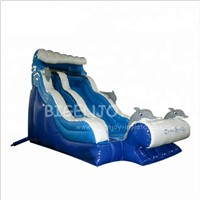 18ft Outdoor Kids Playground Dolphin Splash Pool Water Park Cheap Blow up Air Portable Inflatable Water Slide