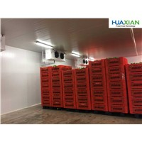 Cold Room for Restaurant Supermarket for Storage of Fish Meat Chickne Eggs Chocolates