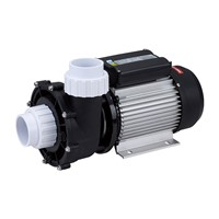 Spa Pump, with CE, SAA Approval, 2 Inch Coupling, AC Motor,