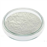 High Purity Pharma Grade White Powder Hydrocortisone Acetate CAS: 50-03-3