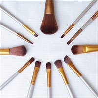 Naked3 Brushes of 12 a Set Powder Eye Shadow Brush High Light Lip Brush Makeup Brush for Face Including the Iron Box