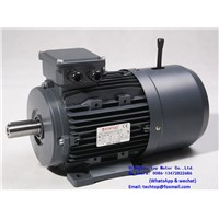 MSB Series Asynchronous Three-Phase Brake Motors with Squirrel Cage Rotor. Direct Current Brake TECHTOP Motor