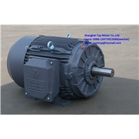 TXC Series NEMA Premium Efficiency 3-Phase Motors TECHTOP Motor