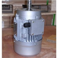MSD Series Three-Phase Asynchronous Double-Polarity Motors Aluminum Housing TECHTOP Motor
