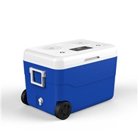 55 Liter Ice Cooler with Speaker & Power Station Outdoor Camping Ice Chest Box