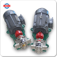 Hengbiao Stainless Steel KCB Electric Motor Vegetable Oil Olive Palm Edible Peanut Oil Food Grade Liquid Transfer Pump