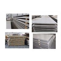 Galvanized Iron Sheets Hot Rolled Iron/Alloy Steel Plate/Coil/Strip/Sheet Ss400, SPHC Black Steel Plate