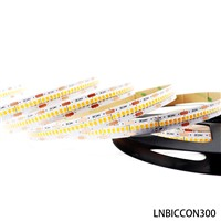 Built-in Constant Current IC 2835 LED Strip 300Leds
