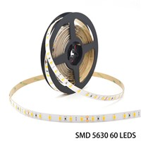Waterproof IP65 IP66 IP67 200mp 3m Tape SMD5630 60LEDs LED Strip Lighting