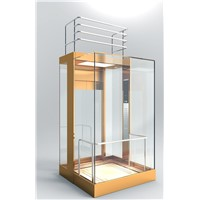 Passenger Elevator, Cargo Elevator High Quality & Best Price