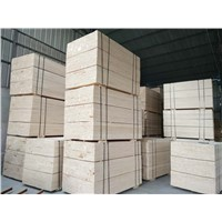 Poplar LVL Used for Pallet / Packaging