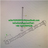T406607/T412036 Perkins Camshaft Assy for 1106C-E70 Caterpillra C7.1/Perkins Parts/CAT Parts