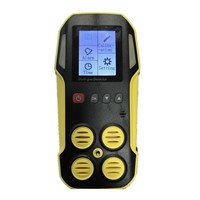 Portable Industrial Multi Gas Detector for CO, H2S, O2 & CH4