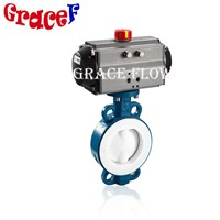 PTFE Wafer Type Cast Iron Butterfly Valve with Pneumatic Actuator