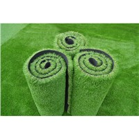 Sport Artificial Grass Physical Exercise Artificial Grass from Evergreen Properity in Chinese