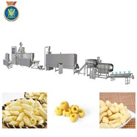 Automatic CE Snack Food Machinery Extruder