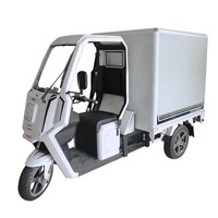 2020 New EEC Approval 2000w Power Adult 3 Wheel Electric Tricycle