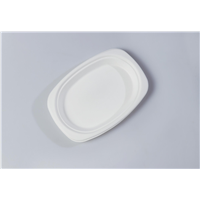 Oval Quality Disposable Biodegradable Tray(Waterproof, Oil-Proof, Fit to Microwave)