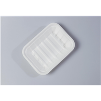 P25 Quality Disposable Biodegradable Tray(Waterproof, Oil-Proof, Fit to Microwave)