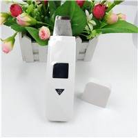 EMS Facial Cleansing Device Ultrasonic Ion Skin Scrubber