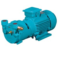 SK-0.5A 1.5kw Single Stage Monoblock Liquid Ring Vacuum Pump Used for Capsule Filling Machine