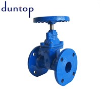Stainless Steel Gate Valve with Key