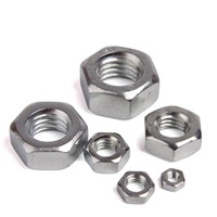 Hex Nuts DIN934 Best Quality from China