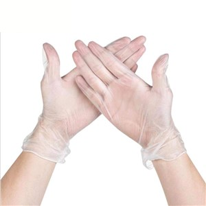Cleanroom Gloves at Low Prices for Food & Hospital Use by PVC/ Vinyl Gloves