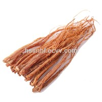 Dried Red Ginseng Roots for EU Standard