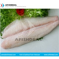 FROZEN PANGASIUS FISH - SWAI - BASA - FILLET - STEAK