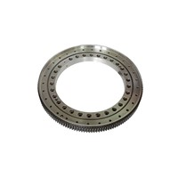 Slewing Ring Bearing with Spray Paint & Corrosion-Proof